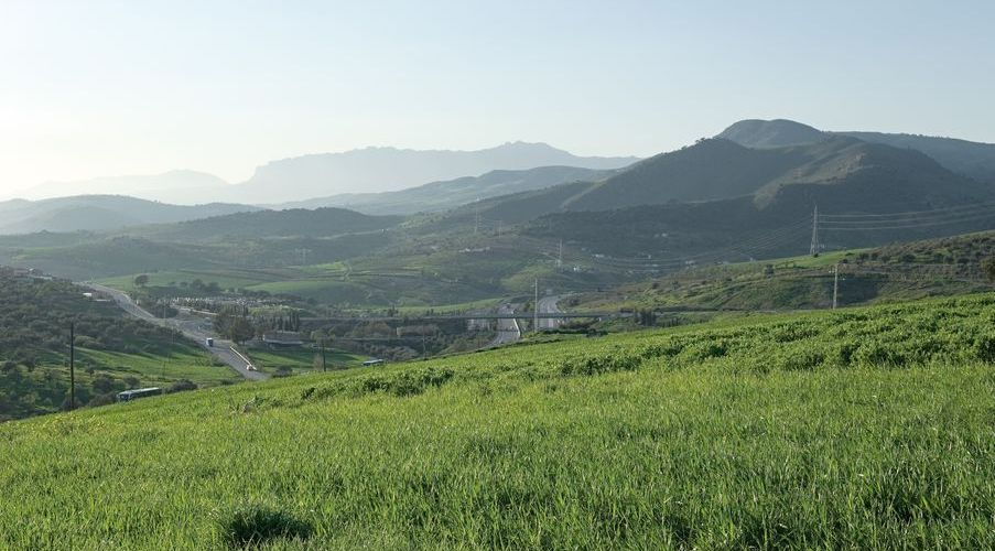 The Guadalhorce Valley is a very fertile area; see for yourself with us.  (Photo: J. Hidalgo / Turismo Costa del Sol).