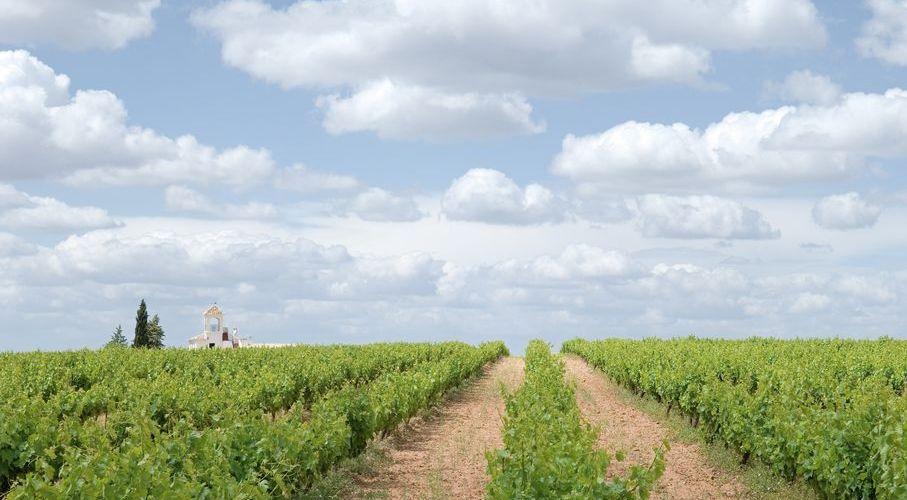 An idyllic rural scene from the Antequera & Guadalhorce valley area. (Photo: J. Hidalgo / Turismo Costa del Sol).