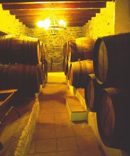 Maestría unida a paciencia: la maduración del vino en barrica.