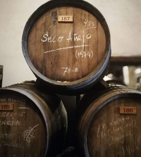 Sweet Malaga wines need ageing over time; find out why and how with us.